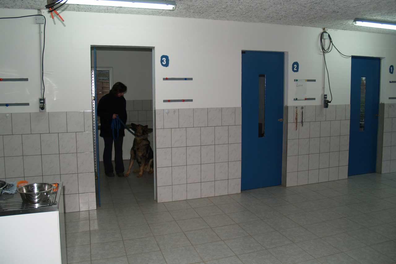 Innenbereich der Hundepension
